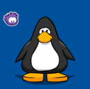 Purple Puffle pin on a Player Card