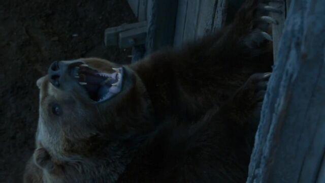 640px-Little_Bart_the_Bear.jpg