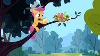Scootaloo and birds S2E23