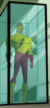 Kid Flash display