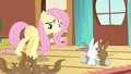 Fluttershy all just cranky S3E13.png
