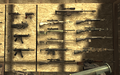 Gun Wall2 F.N.G. COD4.png