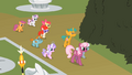 Twist Cutie Mark Crusaders Cheerilee&#039;s Class S2E1.png