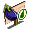 Organic Eggplant Mastery Sign-icon