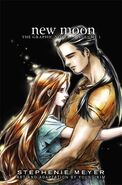 NewMoon Graphic Novel