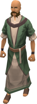 Druid (TWW)
