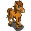 Summer Stallion Foal-icon