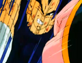 Vegeta&#39;s Respect - Wild sense
