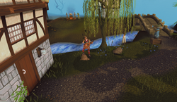 Lumbridge musician