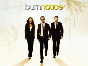 Burn-notice-wiki Season-7 episode-placeholder 01