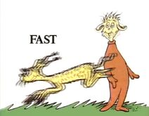 A animal runs fast2
