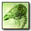 Bird brain Emblem MW2