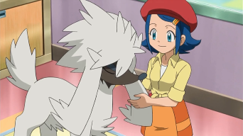 ¡La estilista Pokémon y Furfrou!