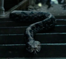 Nagini