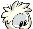 White Puffle