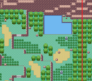 Zona Safari (Hoenn)