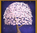 Cherry Blossom Tree