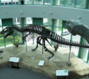 Acrocanthosaurus