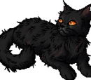 Yellowfang