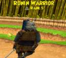 Ronin Warrior