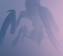 Creatures of the Mist