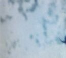 BlackRock Shooter (OVA)