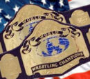 ACW Impulse Tag Team Championships