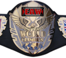 Extreme Answers Wrestling Answers World Championship