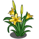 Day Lily (Spring Basket)-icon.png