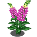 Foxglove (Spring Basket)-icon.png