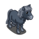 Black Dartmoor Pony-icon.png
