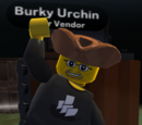 Burky Urchin