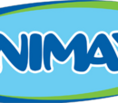 Animax