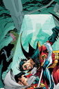 Robin Tim Drake 0052.jpg