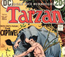 Tarzan Vol 1 212