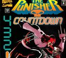 Punisher Vol 2 104