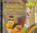 What's Up in the Attic?