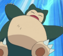 Snorlax Asha