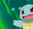 Squirtle Asha