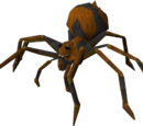 Fever spider