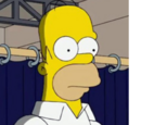 Homer Jay Simpson