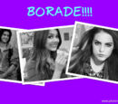 Gallery:Borade