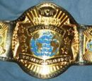 ACWL World Heavyweight Championship