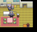 Pokémon Ruby/Sapphire Walkthrough