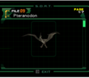 Pteranodon (file)
