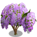 Japanese Wisteria Tree-icon.png