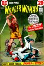 Wonder Woman Vol 1 202.jpg