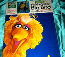 """Pin"" the Tail on Big Bird"