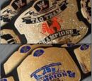 WWE Unified Tag Team Championship