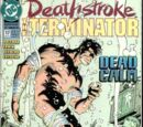Deathstroke the Terminator Vol 1 17